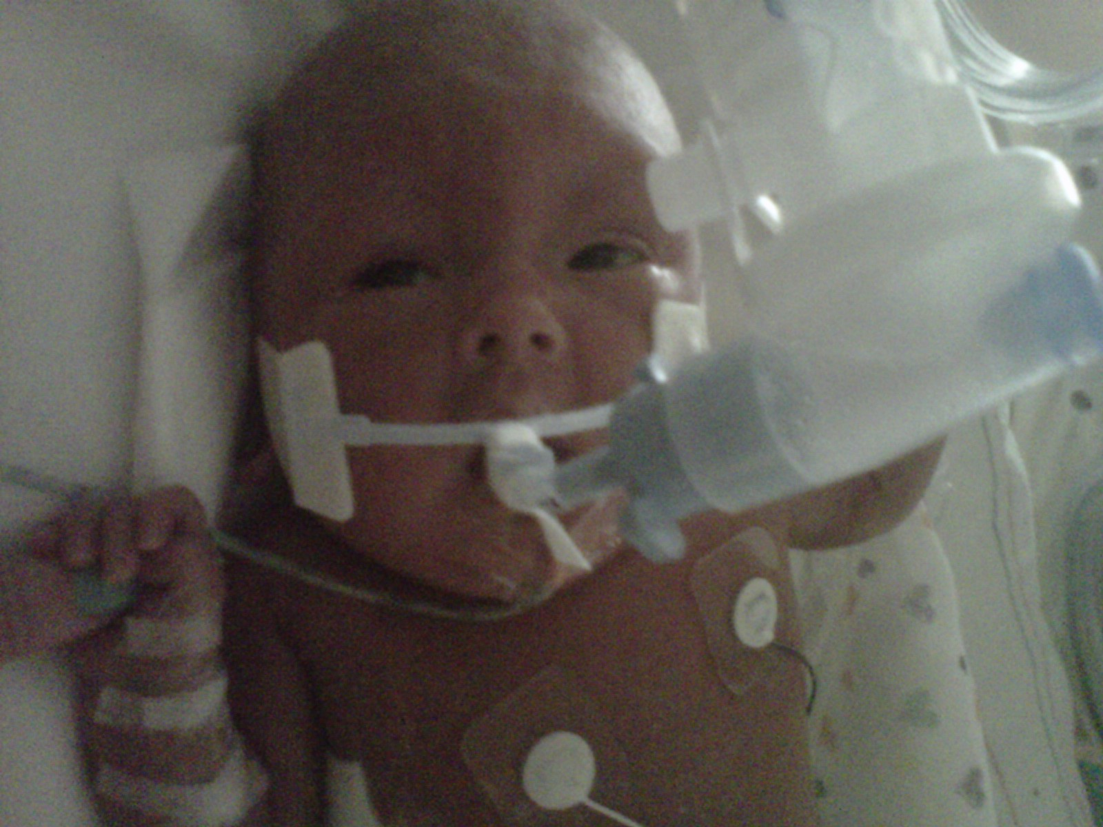 Our Little Remy February 23rd 2011 After A Routine